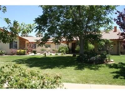 Agua Dulce Single Family Home For Sale: 35400 Thomas Road