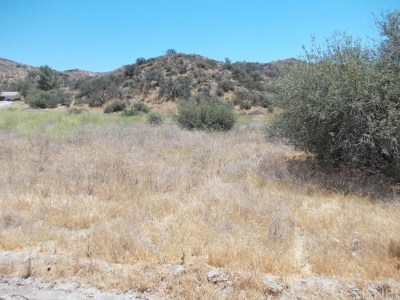 Canyon Country Residential Lots & Land For Sale: Baker Canyon Rd