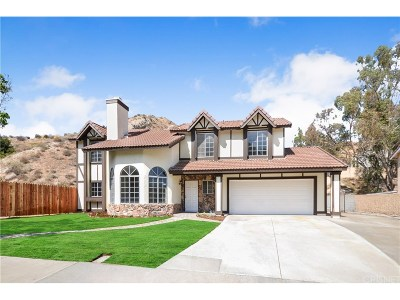 Canyon Country Single Family Home For Sale: 29052 Poppy Meadow Street