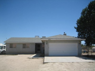Rosamond Single Family Home For Sale: 7346 Cypress Avenue