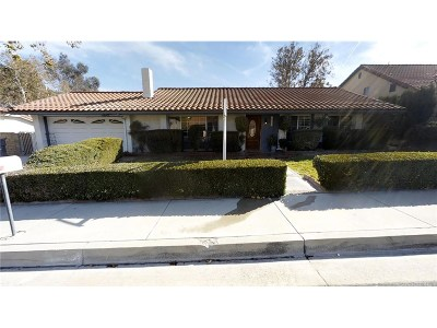 Canyon Country Single Family Home For Sale: 17026 Canvas Street