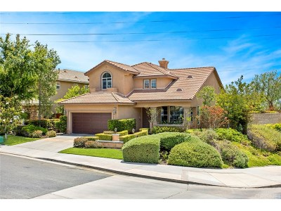 Saugus Single Family Home For Sale: 21648 Glen Canyon Place