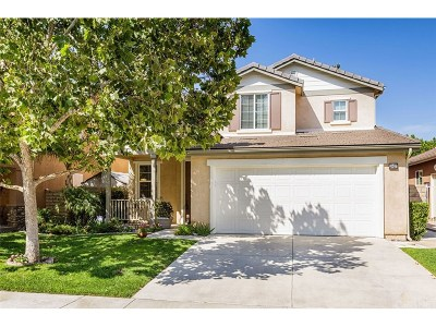 Saugus Single Family Home For Sale: 28437 Stansfield Lane