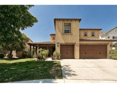 Canyon Country Single Family Home For Sale: 17020 River Birch Court