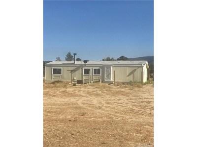 Lancaster Single Family Home For Sale: 28124 Mimi Lane