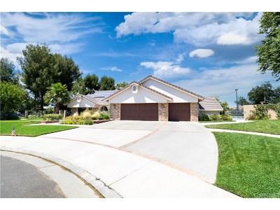Saugus Single Family Home For Sale: 22537 Jeniel Court