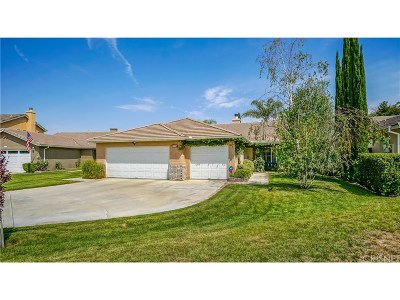 Canyon Country Single Family Home For Sale: 19734 Skyview Court