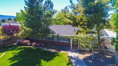 Palmdale Single Family Home For Sale: 41053 13th Street West