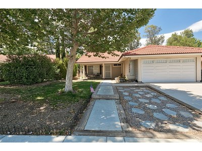 Castaic Single Family Home For Sale: 27725 Wakefield Road