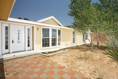 Acton Single Family Home For Sale: 34848 Wild Hare Road