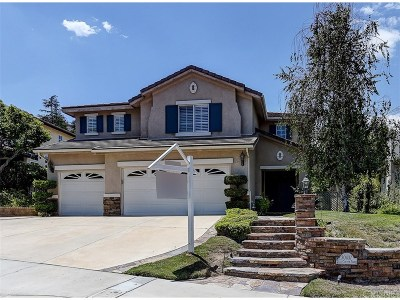 Castaic Single Family Home For Sale: 30437 Star Canyon Place