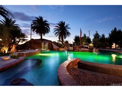 Palmdale Single Family Home For Sale: 1318 West Avenue O4