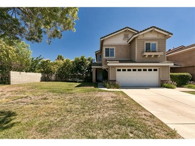 Stevenson Ranch Single Family Home For Sale: 25406 Fitzgerald Avenue