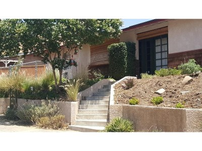 Castaic Single Family Home For Sale: 29639 Cromwell Avenue