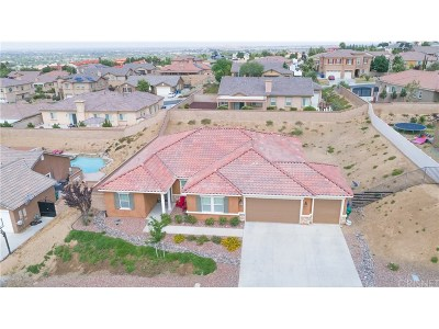 Palmdale Single Family Home For Sale: 41642 Sherry Way