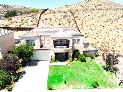 Palmdale Single Family Home For Sale: 39013 Hubbard Street