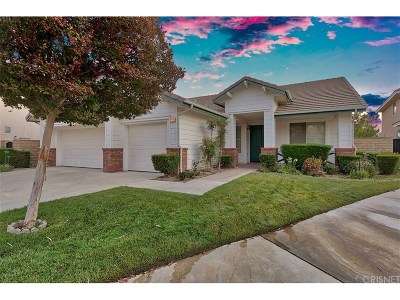 Canyon Country Single Family Home For Sale: 14310 Platt Court