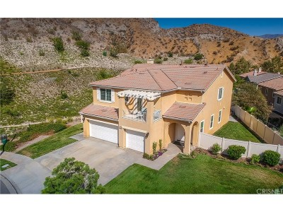 Canyon Country Single Family Home For Sale: 29392 Marilyn Drive