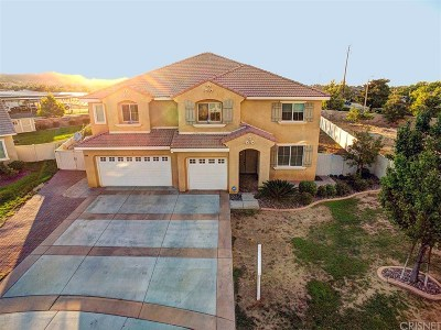 Palmdale Single Family Home For Sale: 2417 Plumeria Lane