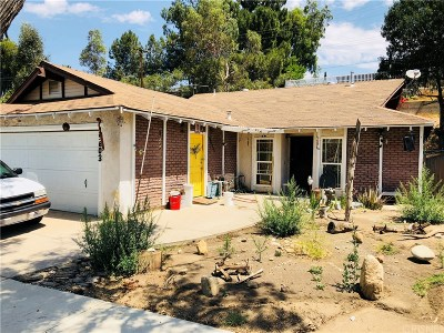 Canyon Country Single Family Home For Sale: 19603 Steinway Street