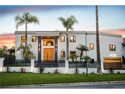 Sherman Oaks Single Family Home For Sale: 14247 Valley Vista Boulevard