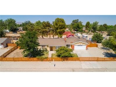 Littlerock Single Family Home For Sale: 36915 96th Street East