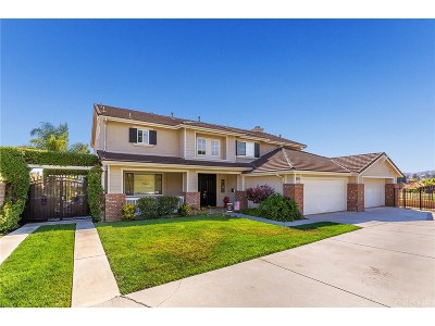 Castaic Single Family Home For Sale: 30309 Mallorca Place
