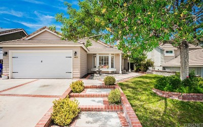 Castaic Single Family Home For Sale: 28735 Forest Meadow Place