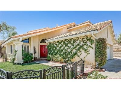 Castaic Single Family Home For Sale: 29903 Muledeer Lane