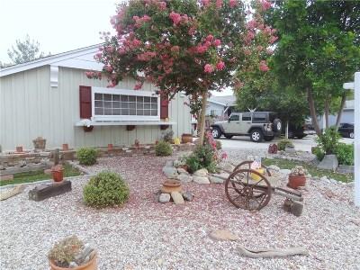 Northridge Single Family Home For Sale: 8320 Rathburn Avenue