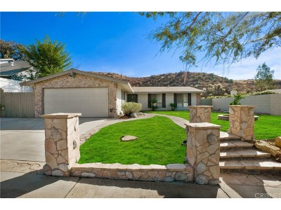Canyon Country Single Family Home For Sale: 28136 Bakerton Avenue