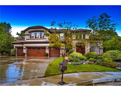 Agoura Hills Single Family Home For Sale: 3923 Davids Road