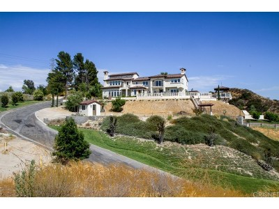 Los Angeles County Single Family Home For Sale: 24116 Wildwood Canyon Road