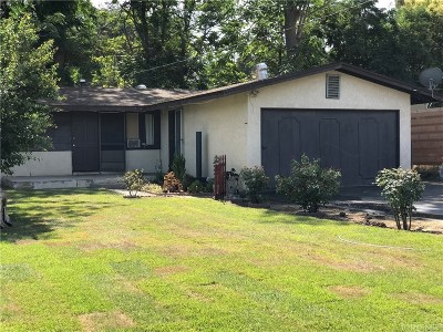 Newhall Single Family Home For Sale: 25030 De Wolfe Road