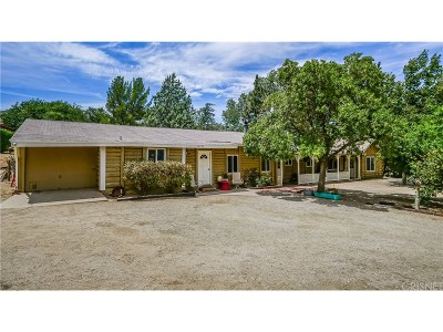 Leona Valley Single Family Home For Sale: 10156 Leona Avenue