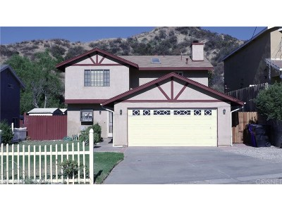 Castaic Single Family Home For Sale: 29127 Eveningside Drive