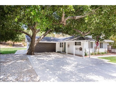 Newhall Single Family Home For Sale: 22933 Market Street