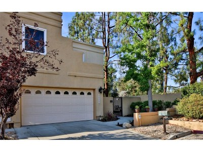 Calabasas Condo/Townhouse For Sale: 23035 Park Privado #77
