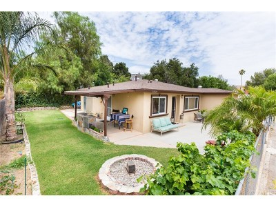 Castaic Single Family Home For Sale: 27829 Ferguson Drive