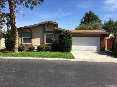 Castaic Single Family Home For Sale: 27609 Onyx Lane