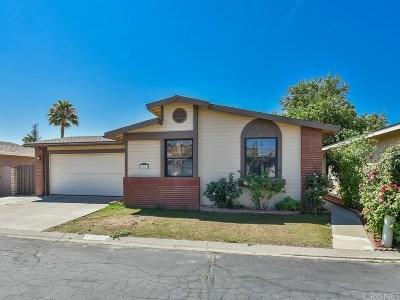 Castaic Single Family Home For Sale: 27612 Agate Way