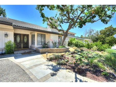 Calabasas Single Family Home For Sale: 26940 Calamine Drive