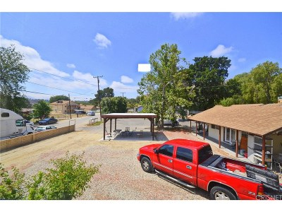Canyon Country Single Family Home For Sale: 16727 Gazeley Street