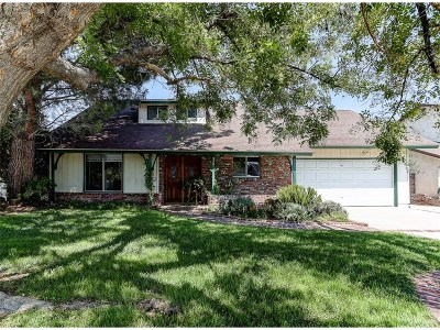 Saugus Single Family Home For Sale: 27812 Parkvale Drive