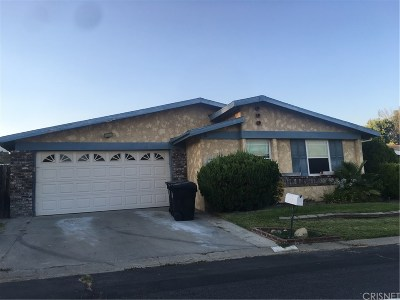 Castaic Single Family Home For Sale: 27551 Amethyst Way
