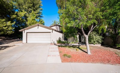 Castaic Single Family Home For Sale: 31668 Hipshot Drive