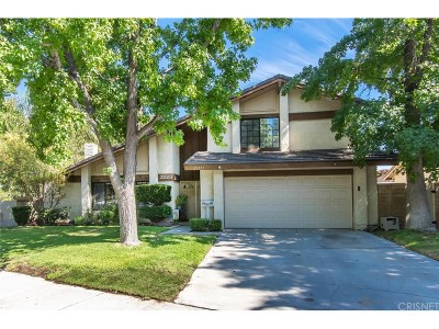 Valencia Single Family Home For Sale: 23551 Avenida Rotella