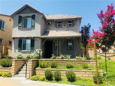 Valencia Single Family Home For Sale: 28461 Camino Del Arte Drive
