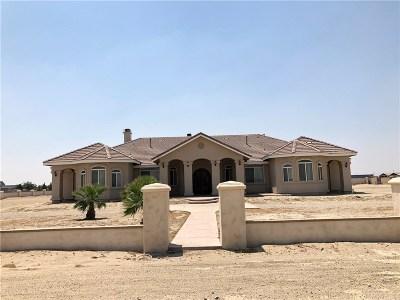 Rosamond Single Family Home For Sale: 6784 Elder Avenue