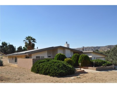 Leona Valley Single Family Home For Sale: 39753 87th Street West